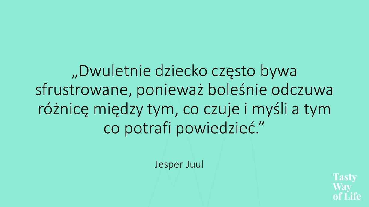 (Polski) Bunt dwulatka. O co w nim chodzi?